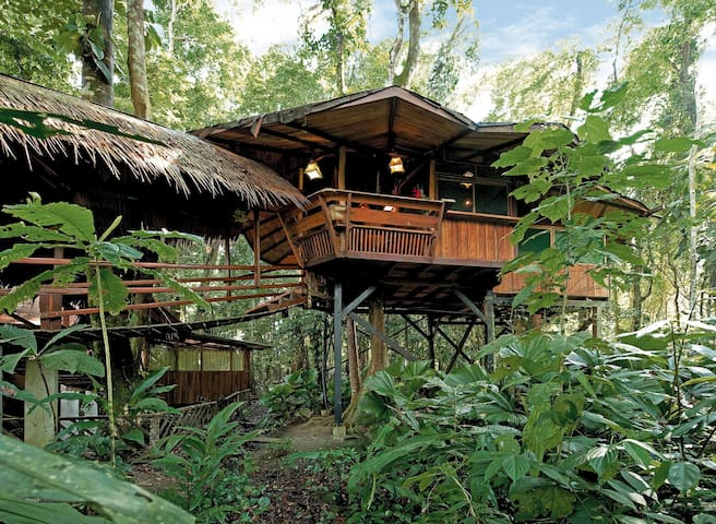 Tree House with ocean front property - Playa Chiquita - Villa
