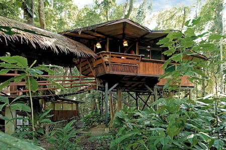 Tree House with ocean front property - Playa Chiquita