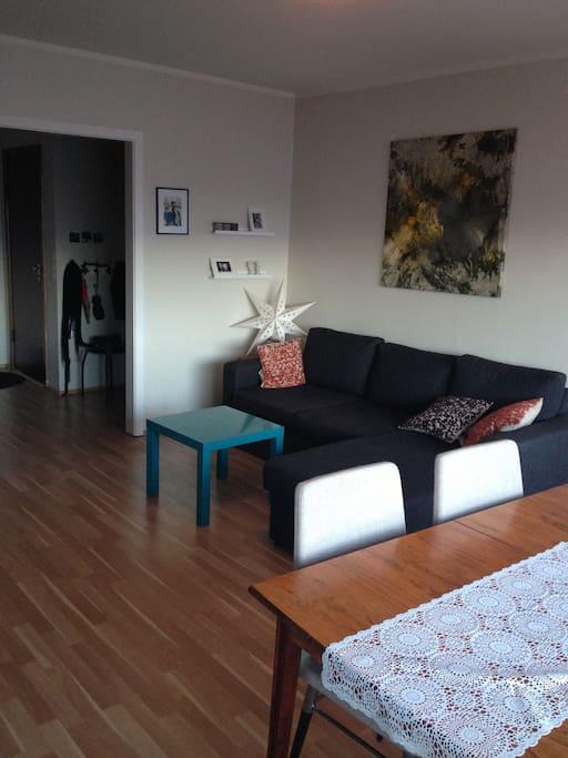 Living room taken from the balcony door.