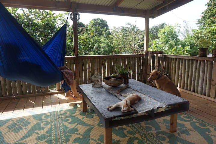 The balcony, Kola and Kava.
