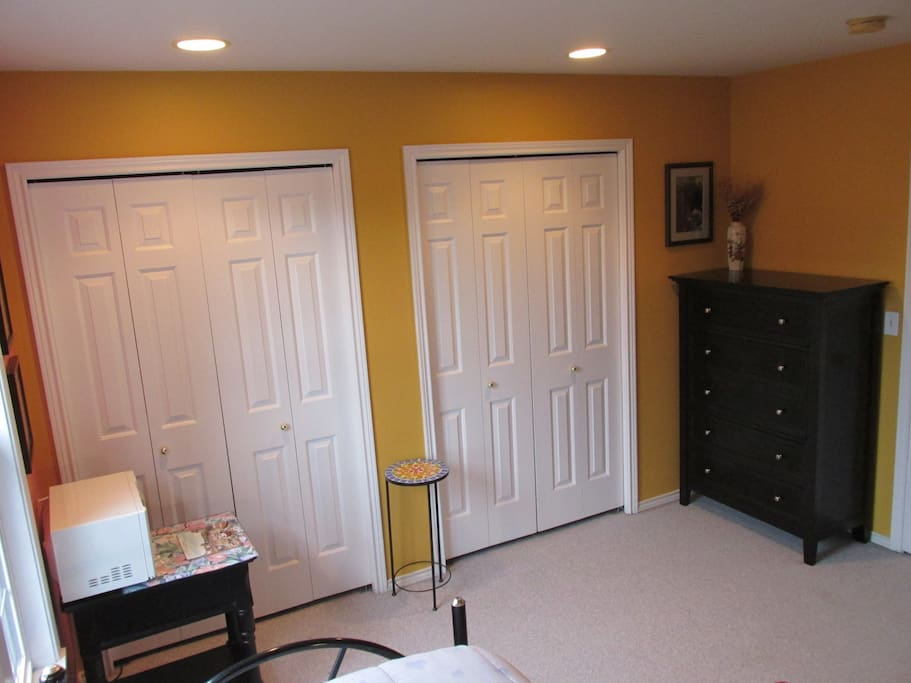 Large room with 2 Full size closets and large dresser