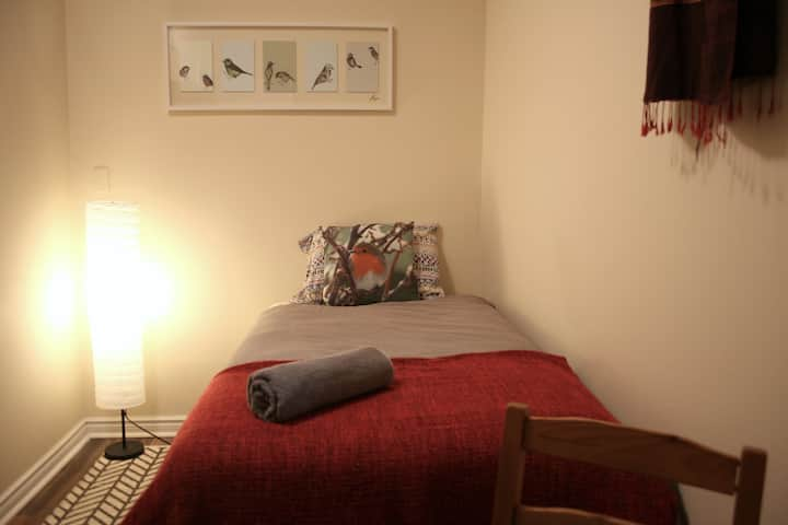 Cozy single room in the heart of downtown Toronto!