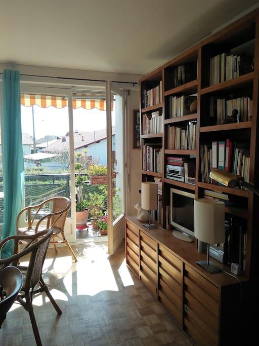 Salon, bibliothèque et télévision