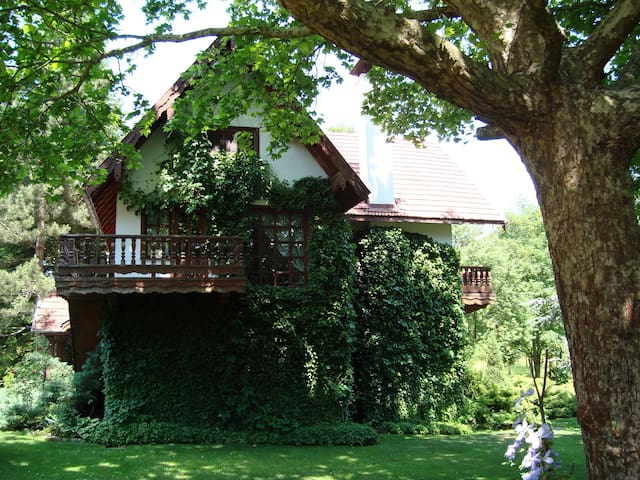 Country House in Abant - Bolu Merkez - Chalupa