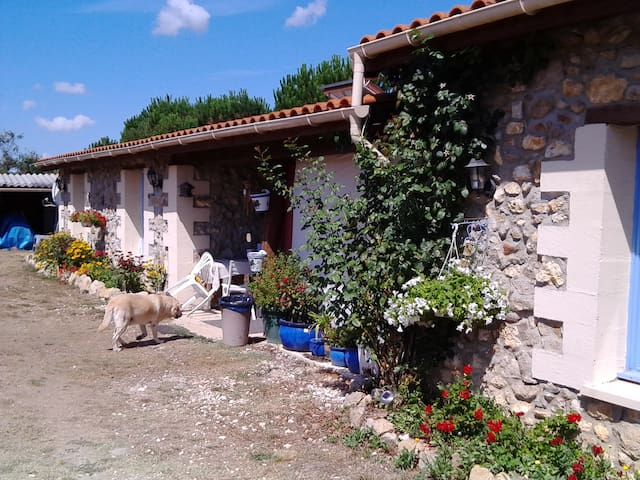 French Country Cottage Apartment Sleeps 6 / B&B - Boisredon - Departamento