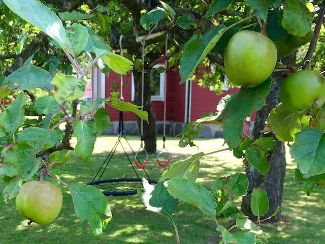 Mysigt&barnvänligt torp vid havet - Norje - Hus