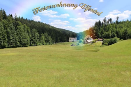 Holiday Apartment in silent nature - Baiersbronn