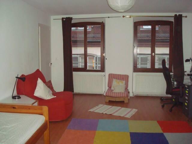 belle chambre centre ville 2/2 - Estrasburgo - Apartamento