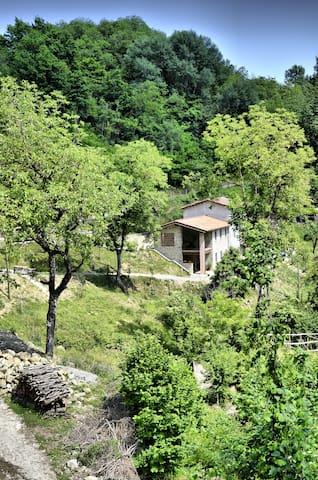 Il Campanaccio -  Oasi di relax - Castelnuovo di Garfagnana - บ้าน