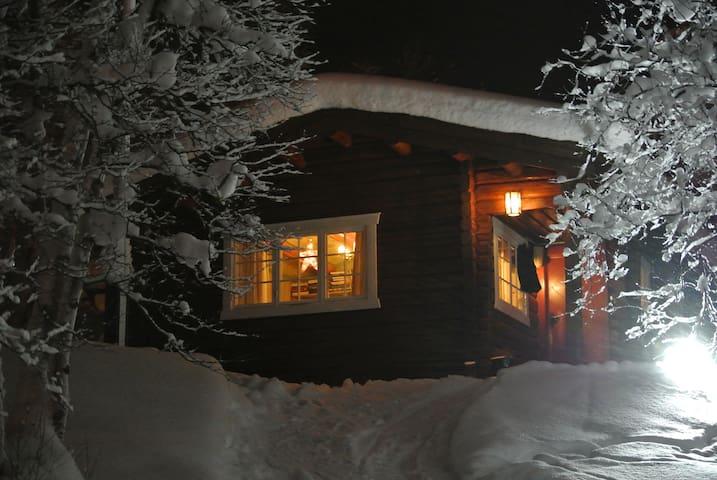 Veslehaugen Geilo.  Ski in ski out - Geilo - Hytte