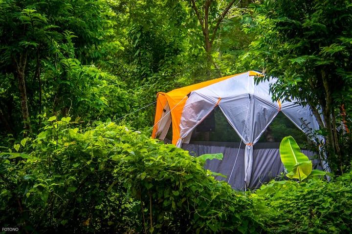 Cayuco Camping Barú | Cartagena | Ecofriendly |