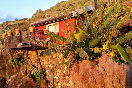 """Banana Cabana"" Madeira Island - Ribeira Brava"