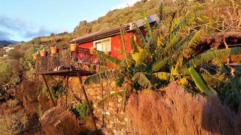 """""""Banana Cabana"""" Madeira Island"""