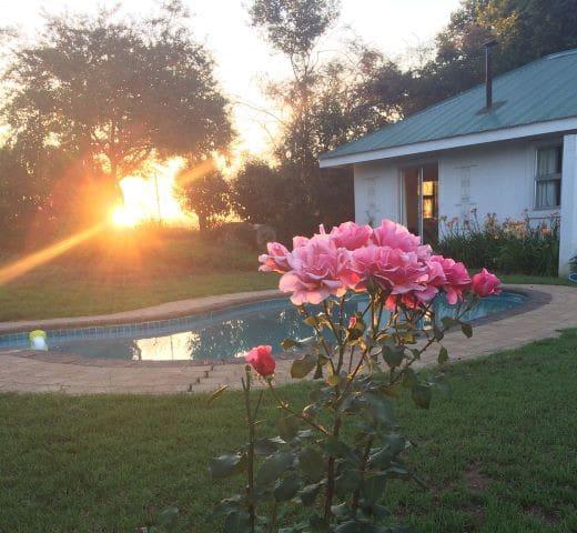One Rose Lane Guest Cottage