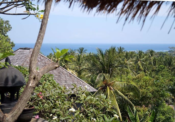 Ocean View from the Terrace