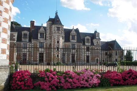 Chambre d'hôte en Château (12 km TOURS et AMBOISE) - Vernou sur Brenne - Bed & Breakfast