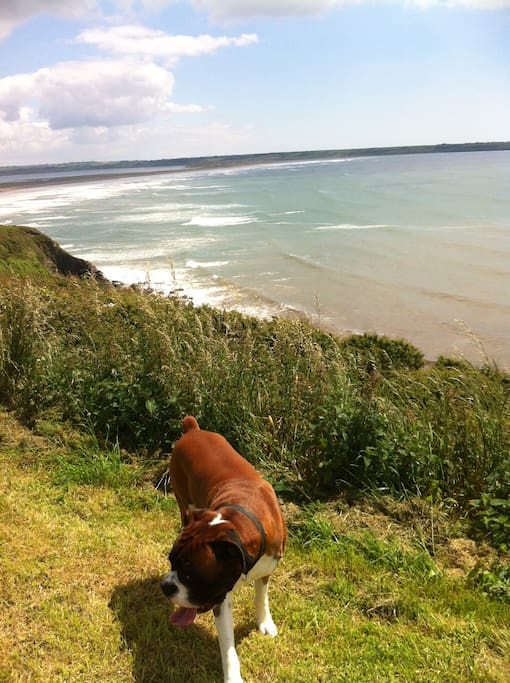 Beautiful cliffside walk three minutes from cottage