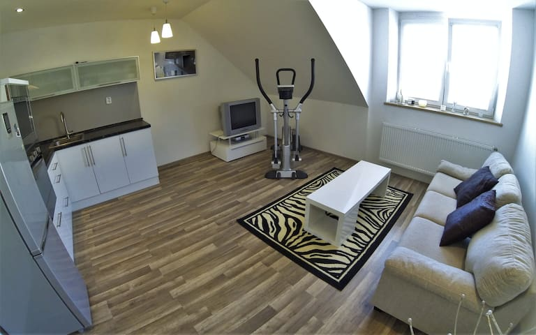Apartmán v klidné části města - Krnov - Leilighet