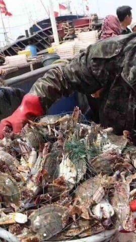 禁渔期过了,螃蟹一筐筐又大又肥,又新鲜