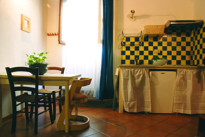 Studio/Apartment in Santo Spirito