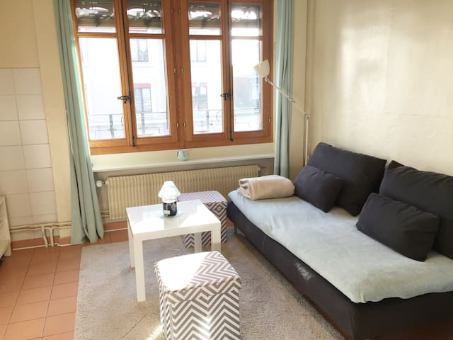 Cute & Cosy one bedroom flat in Geneva city center - Genève