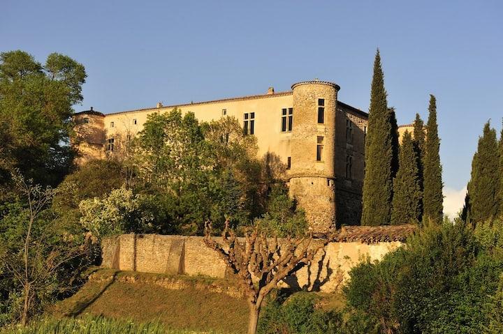 Renaissance Castle in Provence