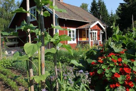 Vildmarks retreat - Lessebo