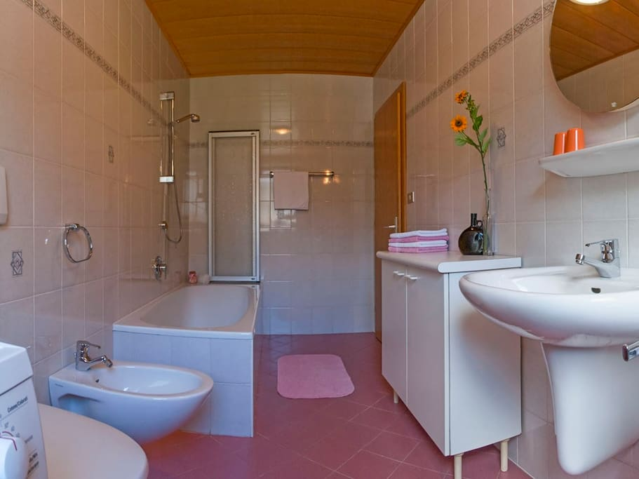 Bathroom with bath tube and shower, washing machine