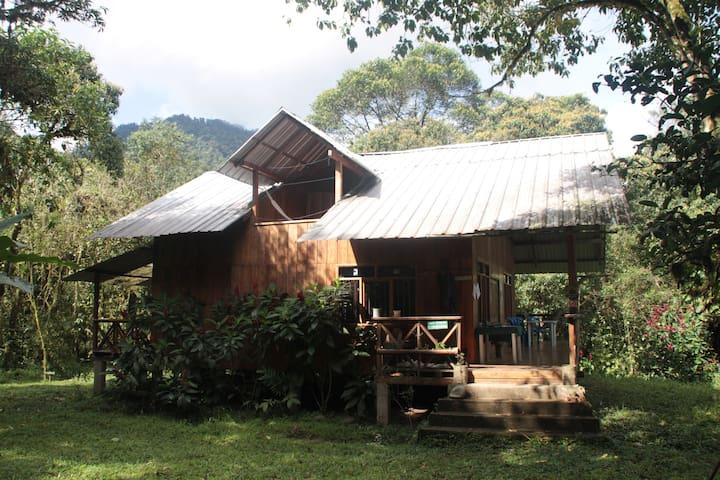 Reserva Las Tangaras Lodge - Mindo - Altres
