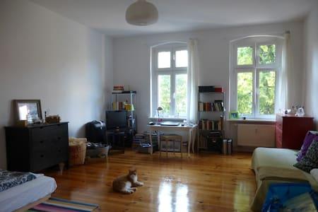 Wohnen in Berlin Prenzlauer Berg - Berlin - Wohnung