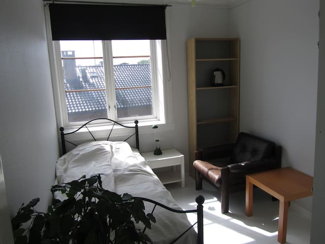 Central ,quiet , behind Palace. - Oslo - Apartment