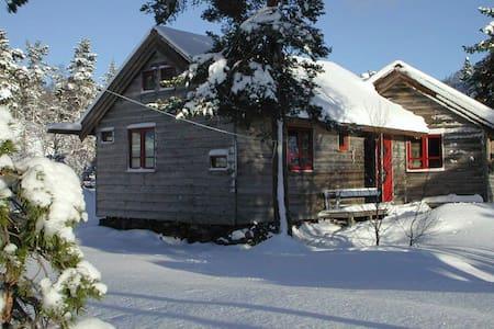 Mountain Cabin - Sand - Cabana