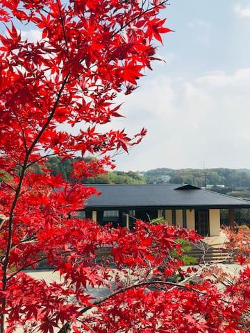 奈良市 敷地面積「2800㎡」日本庭園別荘 ヴィラ貸切 車送迎可