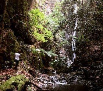 Falls Forest Retreat Gondwana Land - Villa