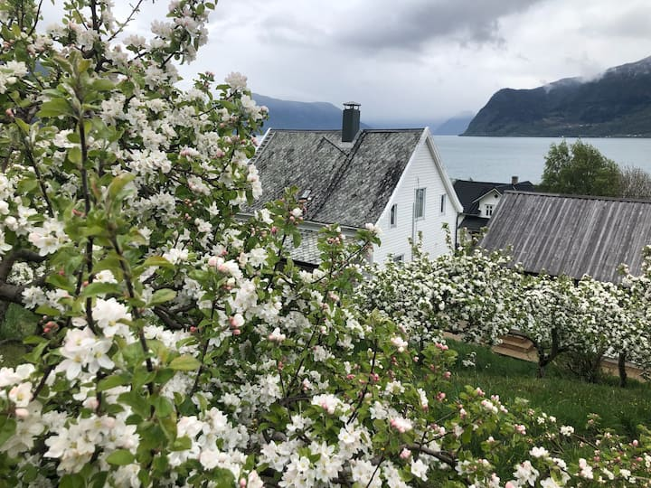 Charming farmhouse in Leikanger, Sognefjorden