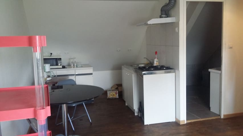 APPARTEMENT A LA CAMPAGNE MEUBLE - Charmes - อพาร์ทเมนท์