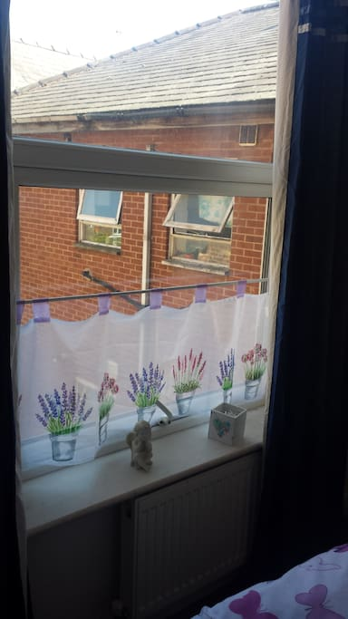 Ausblick aus deinem Zimmer view from your room