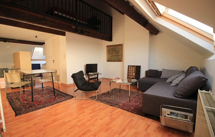Bright penthouse duplex with a view - Schaarbeek - Apartamento