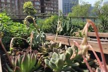 Garden Terrace/MRT Line 1 High-tech Station 2B/3P