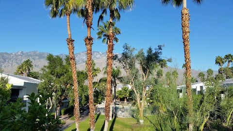 The Palms - Tranquility in Central Palm Springs