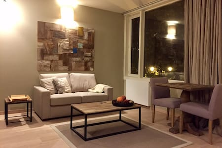 Lovely studio - Brussels city center - Bruxelles - Apartmen