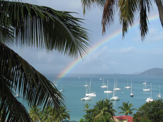 CallwoodsToo CaneGardenBay Tortola 1or2 bdrm villa