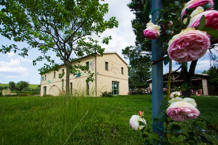 Marcheholiday Fiorini - Barchi - House
