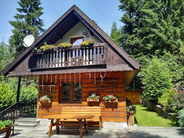 Domek na leśnej polanie  - 70 km od Krakowa