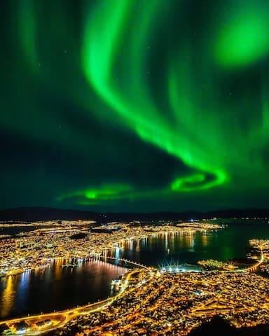 Amazing Northen Light