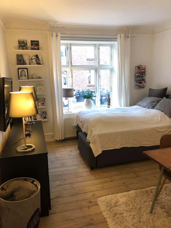 Very nice apartment in Copenhagen..