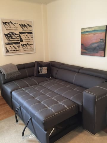 Hide away bed in the living room