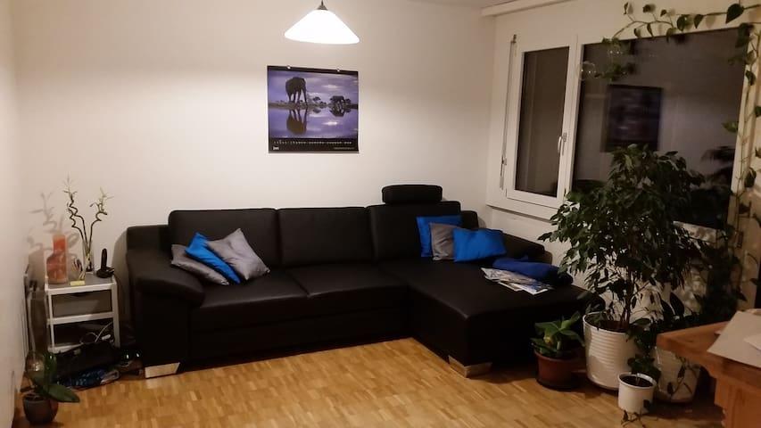 Gemütliche Wohnung - Goldau - Apartamento