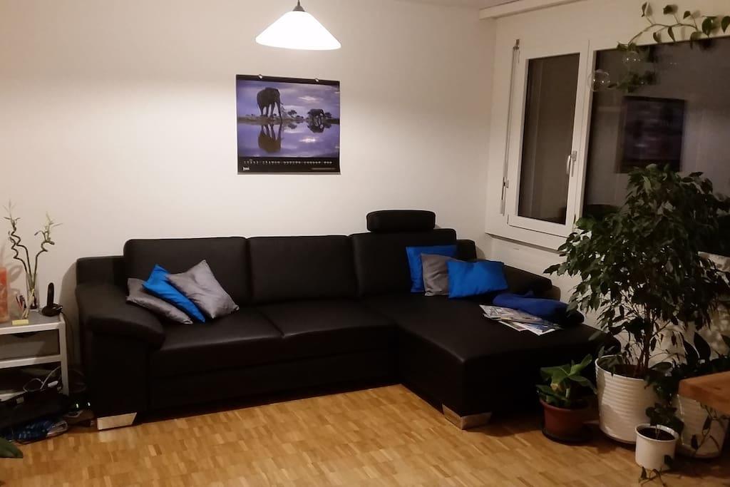 gem tliche wohnung wohnungen zur miete in goldau schwyz. Black Bedroom Furniture Sets. Home Design Ideas
