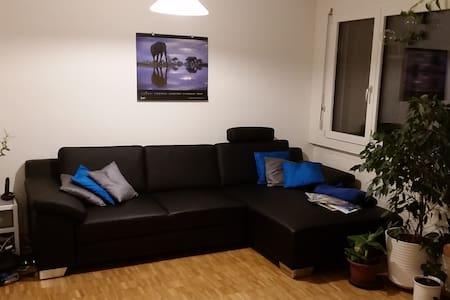 Gemütliche Wohnung - Goldau